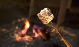 marshmallowonbonfire