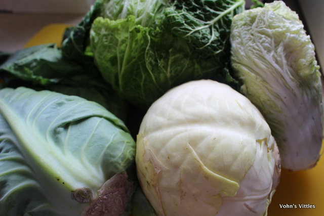 Cabbage selection