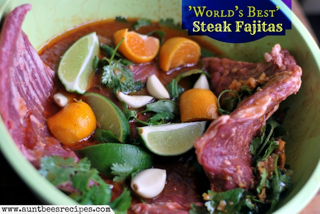 World's Best Steak Fajita marinade