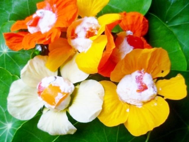 Stuffed nasturtium flowers