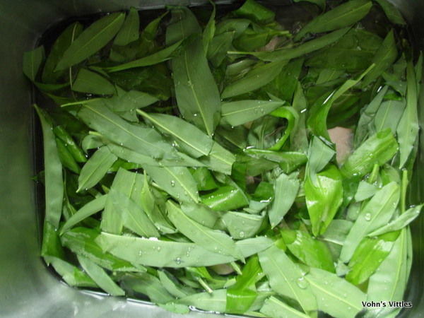 Wash wild garlic