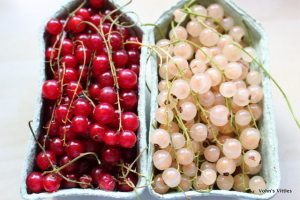 Red currants and white currants